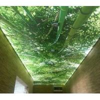 Натяжные потолки - критерии выбора