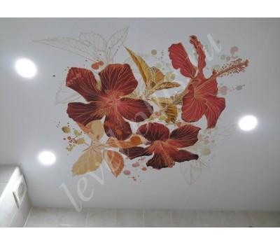 Арт печать (фотопечать) на потолке