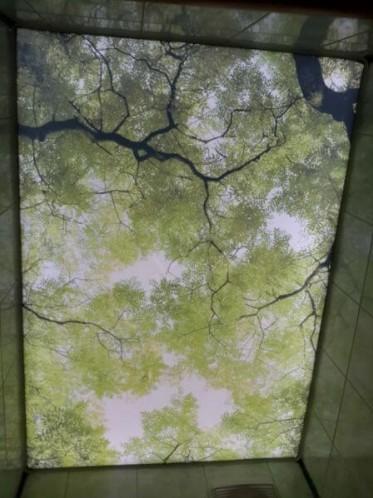 Фотопечать натяжные потолки